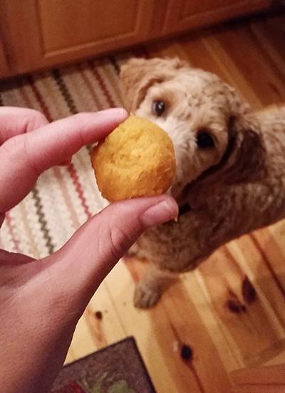 Jett Loves Sweet Potato