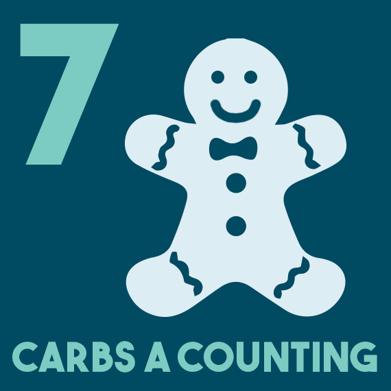 12 days of diabetes christmas - day 7 - seven carbs a counting - diabetic christmas