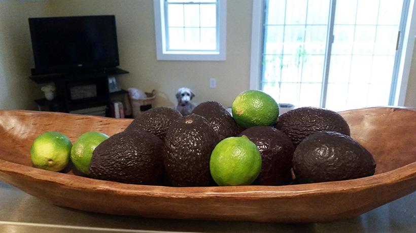 Browning Avocados