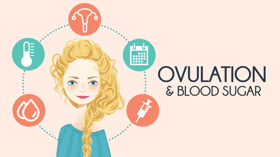 Ovulation and Blood Sugar