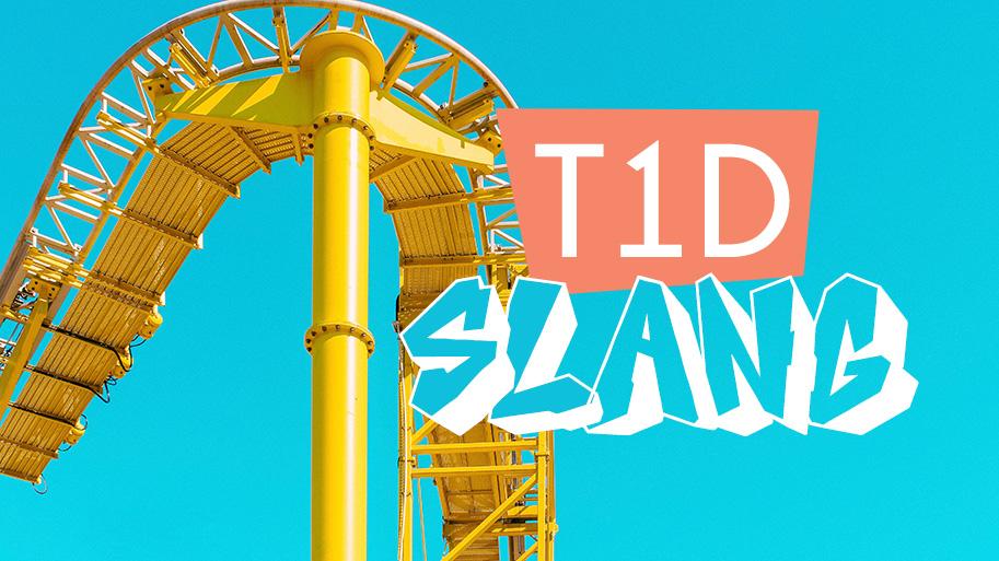 diabetes slang - type 1 diabetes slang terms - T1D Living a diabetes ... 56dee02e6ab2e