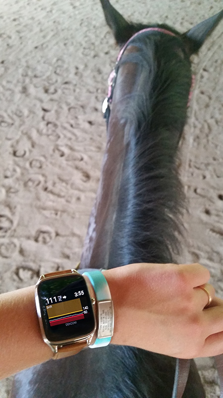 horseback riding android wear
