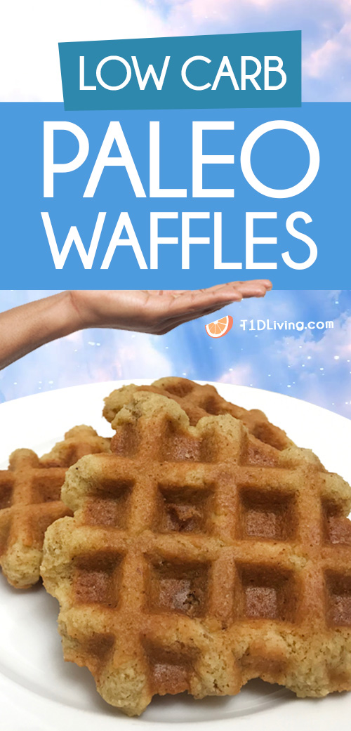 Low Carb Paleo Waffles Pinterest