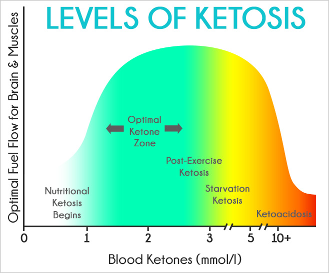 Nutritional Ketosis Blood Levels - Nutrition Ftempo