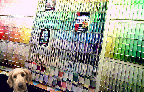 Paint swatches and Jett