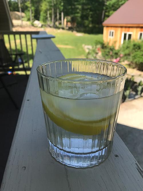 favorite sugar free drinks lemon water